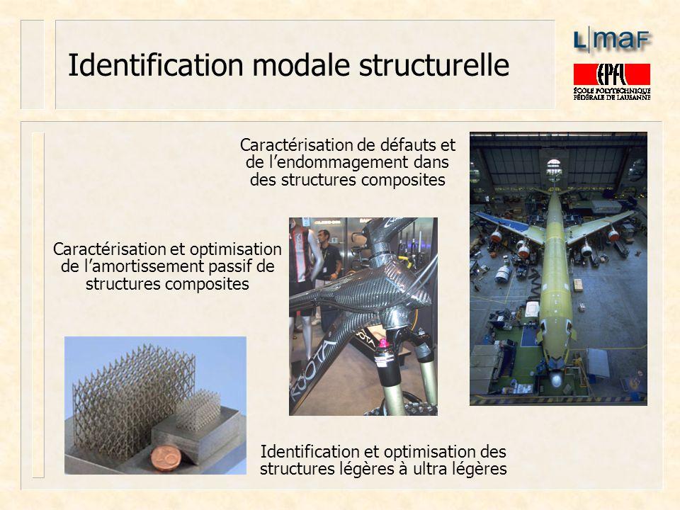 Caractérisation de défauts et de lendommagement dans des structures composites Caractérisation et optimisation de lamortissement passif de structures
