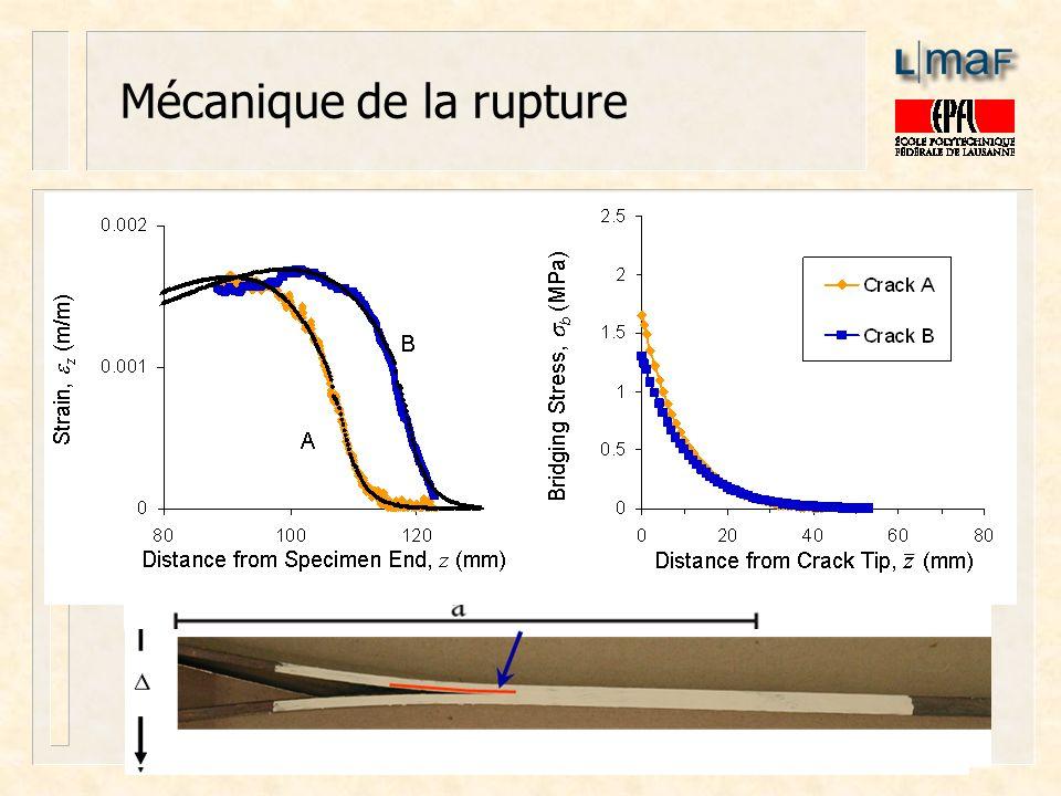 Mécanique de la rupture Délamination des matériaux composites: identification des forces pontantes