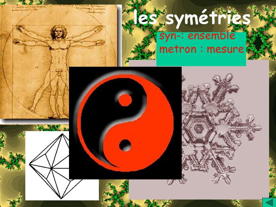 les symétries syn-: ensemble metron : mesure