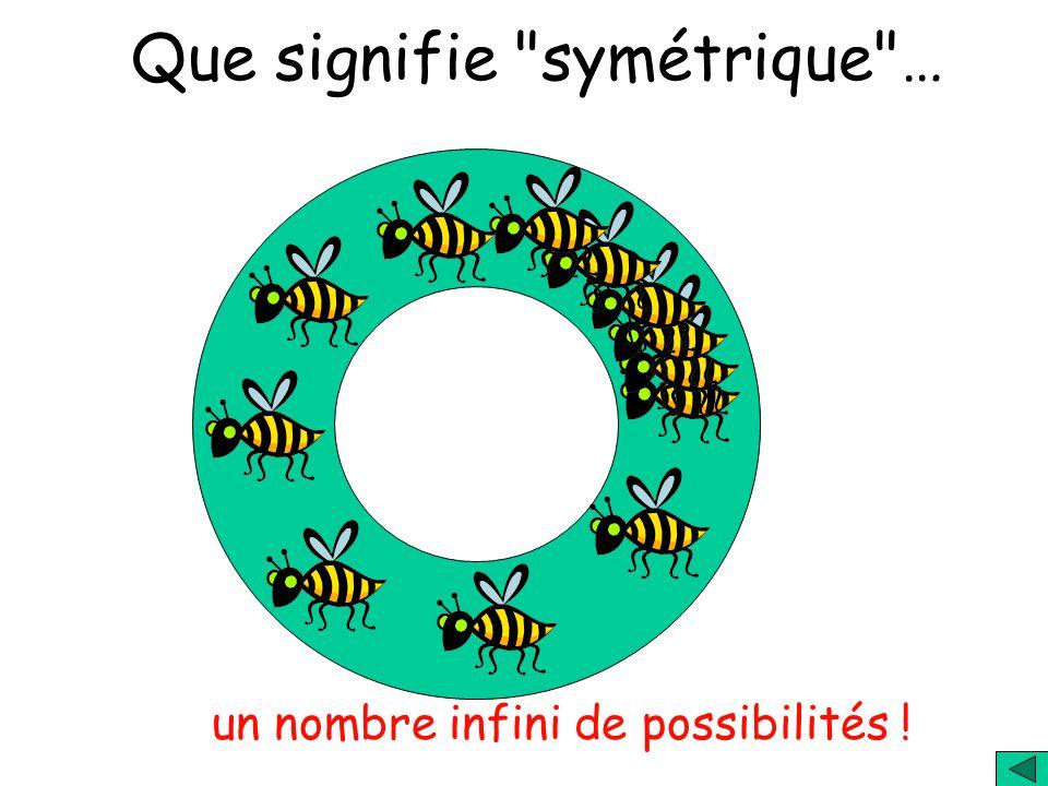 Que signifie symétrique … un nombre infini de possibilités !