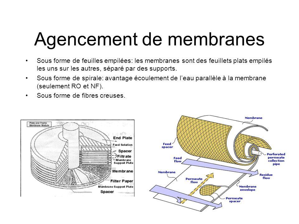Agencement de membranes Sous forme de feuilles empilées: les membranes sont des feuillets plats empilés les uns sur les autres, séparé par des support