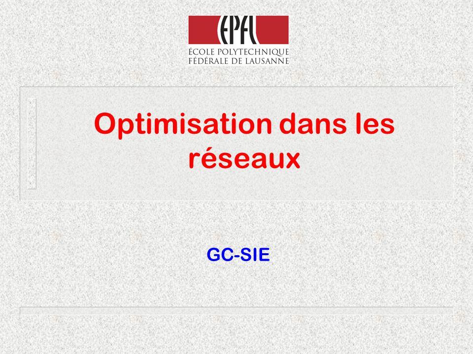 Optimisation dans les réseaux GC-SIE