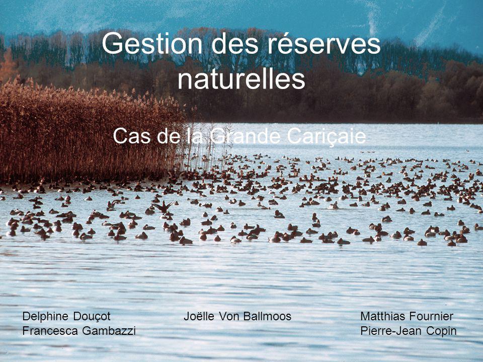 Gestion des réserves naturelles Cas de la Grande Cariçaie Delphine Douçot Joëlle Von BallmoosMatthias Fournier Francesca GambazziPierre-Jean Copin