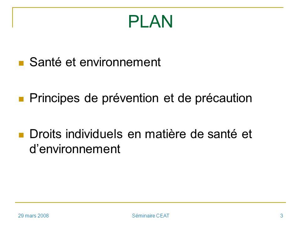 PLAN Santé et environnement Principes de prévention et de précaution Droits individuels en matière de santé et denvironnement 29 mars 2008 Séminaire CEAT 3