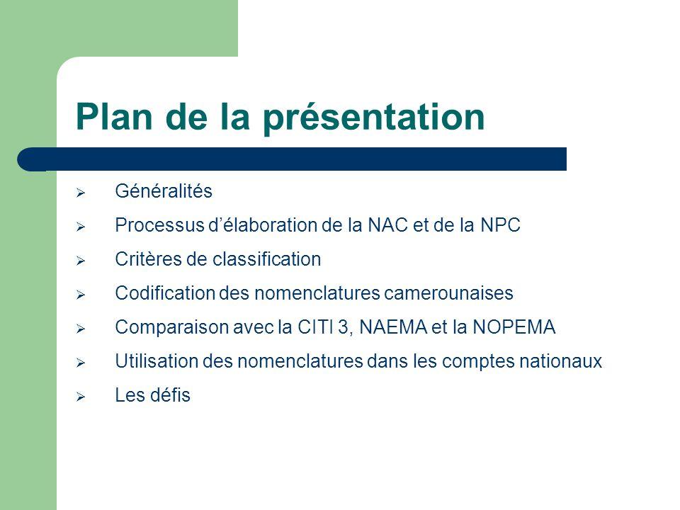 Les défis Produire une nouvelle nomenclature des activités et des produits du Cameroun avant la fin de cette année