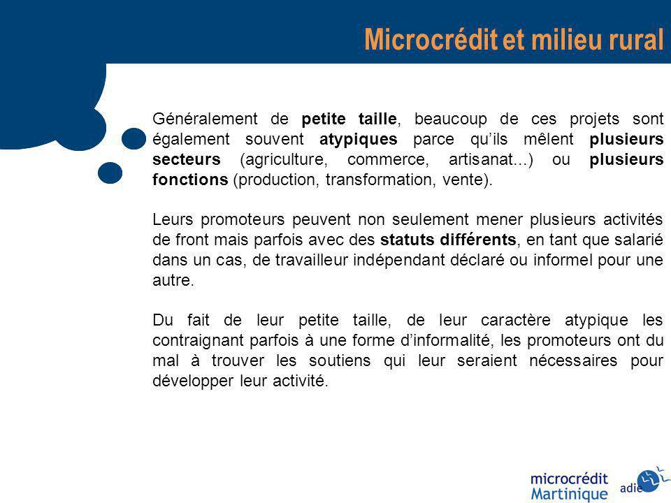 Microcrédit et milieu rural Généralement de petite taille, beaucoup de ces projets sont également souvent atypiques parce quils mêlent plusieurs secteurs (agriculture, commerce, artisanat...) ou plusieurs fonctions (production, transformation, vente).