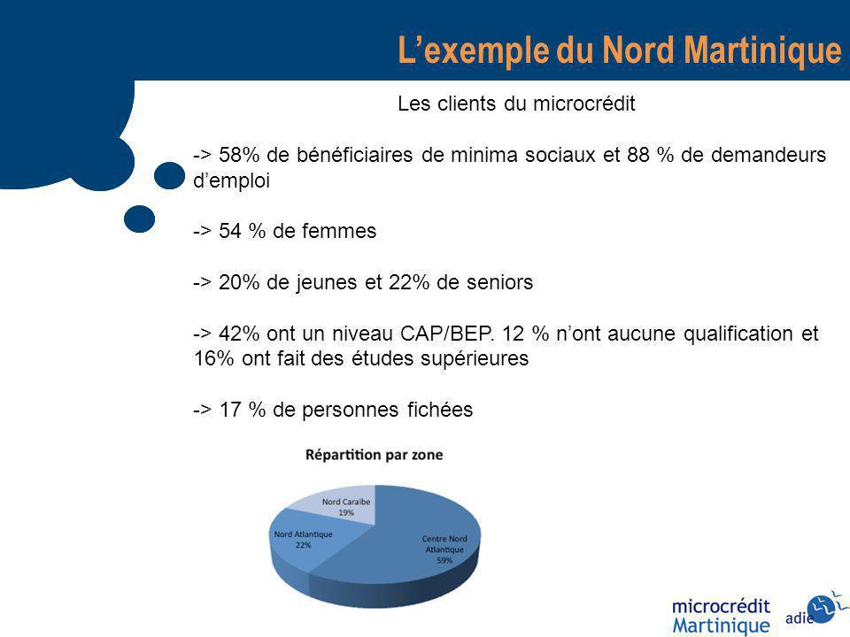 Lexemple du Nord Martinique Les clients du microcrédit -> 58% de bénéficiaires de minima sociaux et 88 % de demandeurs demploi -> 54 % de femmes -> 20% de jeunes et 22% de seniors -> 42% ont un niveau CAP/BEP.