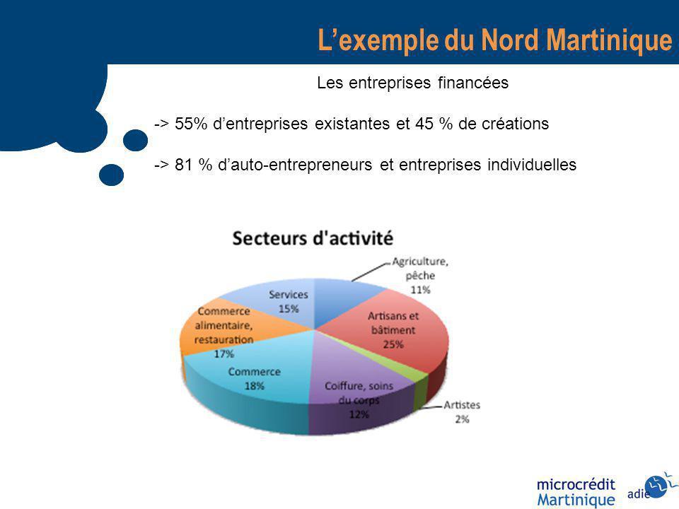 Lexemple du Nord Martinique Les entreprises financées -> 55% dentreprises existantes et 45 % de créations -> 81 % dauto-entrepreneurs et entreprises individuelles