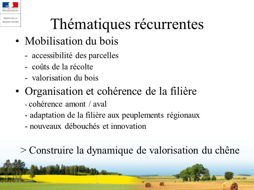 Thématiques récurrentes Mobilisation du bois - accessibilité des parcelles - coûts de la récolte - valorisation du bois Organisation et cohérence de l