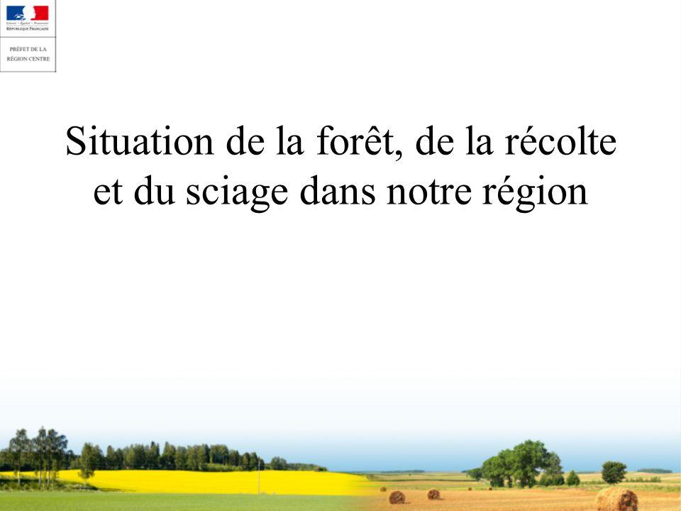 Situation de la forêt, de la récolte et du sciage dans notre région