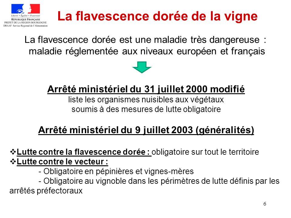 6 La flavescence dorée de la vigne La flavescence dorée est une maladie très dangereuse : maladie réglementée aux niveaux européen et français Arrêté