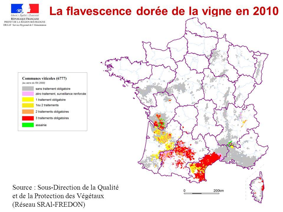 9 Situation FD en Bourgogne De 2003 à 2008, prospection orientée vers les jeunes vignes (FREDON et SRAl) avec lensemble des organismes techniques (Chambres dagriculture, IFV, distributeurs) et viticulteurs Participation financière BIVB et Conseil Régional de Bourgogne 1 ère découverte en 2004 (1 pied) De 2004 à 2009 : –4 foyers découverts de très faible intensité (1 à 5 ceps contaminés) –Origine de la contamination : jeunes plants contaminés via le porte-greffe –3 premiers éradiqués après 2 à 4 années de lutte obligatoire Début 2011 –Un seul foyer actif dans le sud Chalonnais Prospection automne 2011 –SRAl, FREDON, Chambres dAgriculture et techniciens distribution avec participation des viticulteurs