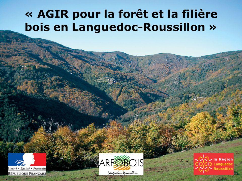 « AGIR pour la forêt et la filière bois en Languedoc-Roussillon »