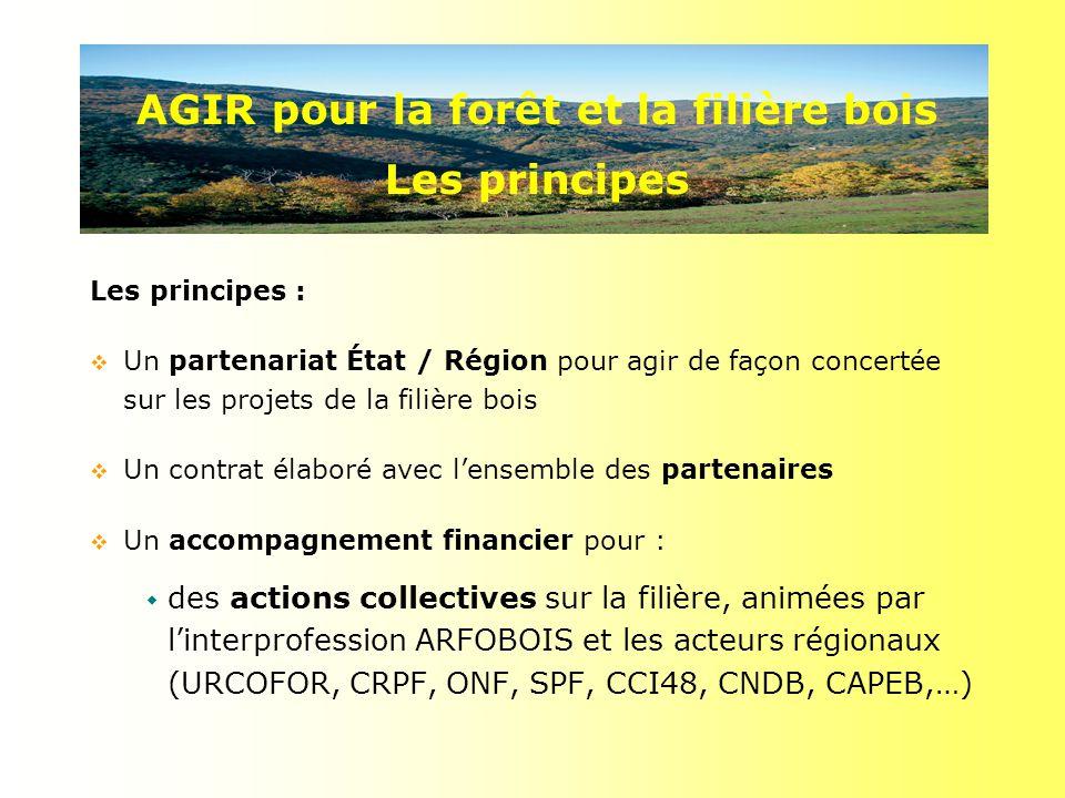 Les principes : Un partenariat État / Région pour agir de façon concertée sur les projets de la filière bois Un contrat élaboré avec lensemble des partenaires Un accompagnement financier pour : des actions collectives sur la filière, animées par linterprofession ARFOBOIS et les acteurs régionaux (URCOFOR, CRPF, ONF, SPF, CCI48, CNDB, CAPEB,…) AGIR pour la forêt et la filière bois Les principes
