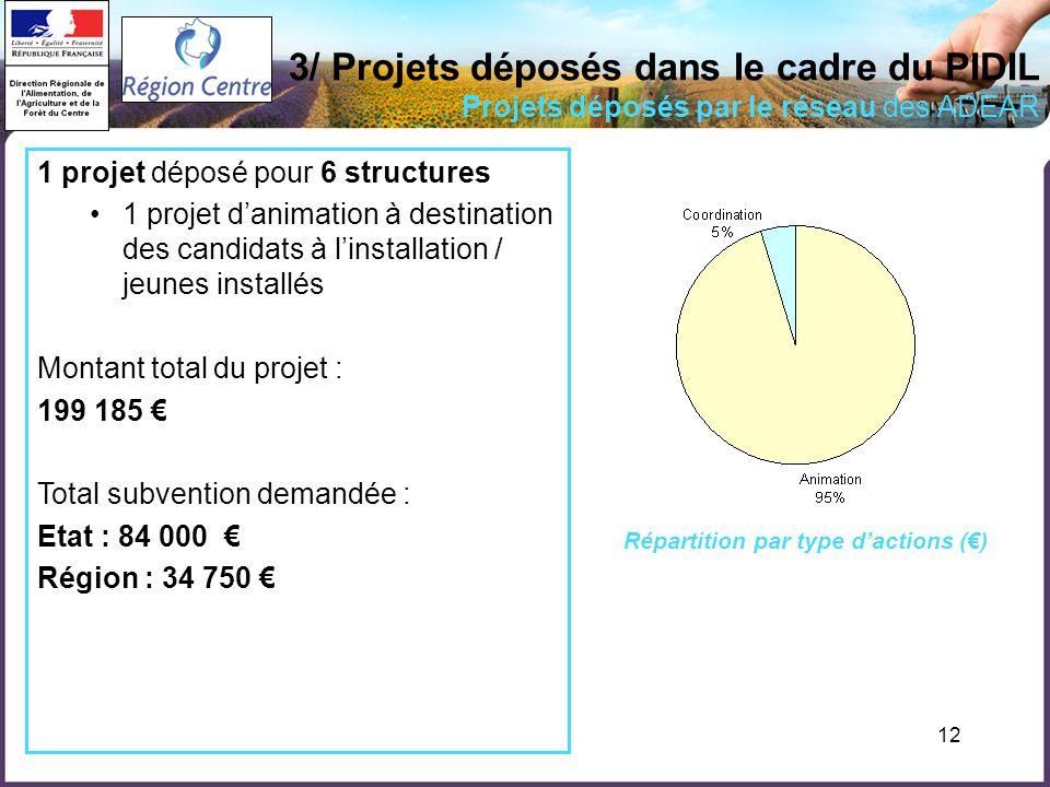 12 3/ Projets déposés dans le cadre du PIDIL Projets déposés par le réseau des ADEAR 1 projet déposé pour 6 structures 1 projet danimation à destinati