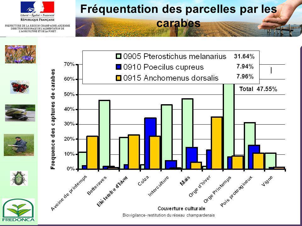 Biovigilance- restitution du réseau champardenais Fréquentation des parcelles par les carabes 31.64% 7.94% 7.96% Total47.55%
