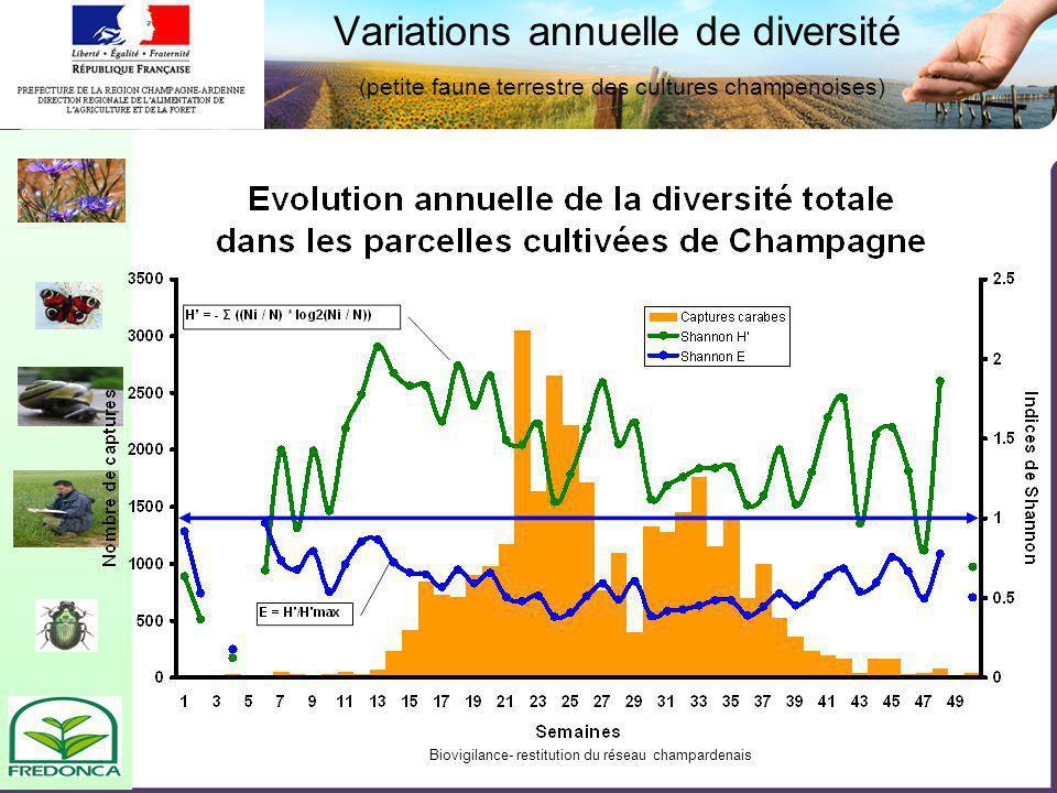 Biovigilance- restitution du réseau champardenais Variations annuelle de diversité (petite faune terrestre des cultures champenoises)