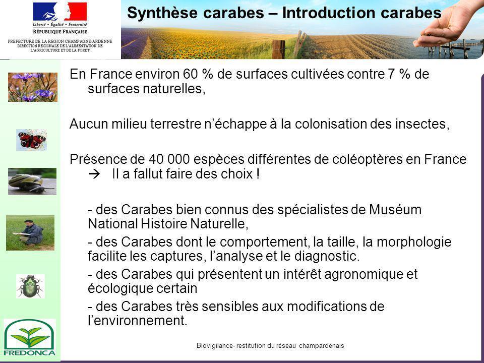 Biovigilance- restitution du réseau champardenais Synthèse carabes – Introduction carabes En France environ 60 % de surfaces cultivées contre 7 % de s