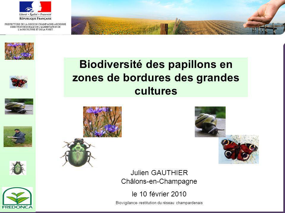 Biovigilance- restitution du réseau champardenais Biodiversité des papillons en zones de bordures des grandes cultures Julien GAUTHIER Châlons-en-Champagne le 10 février 2010