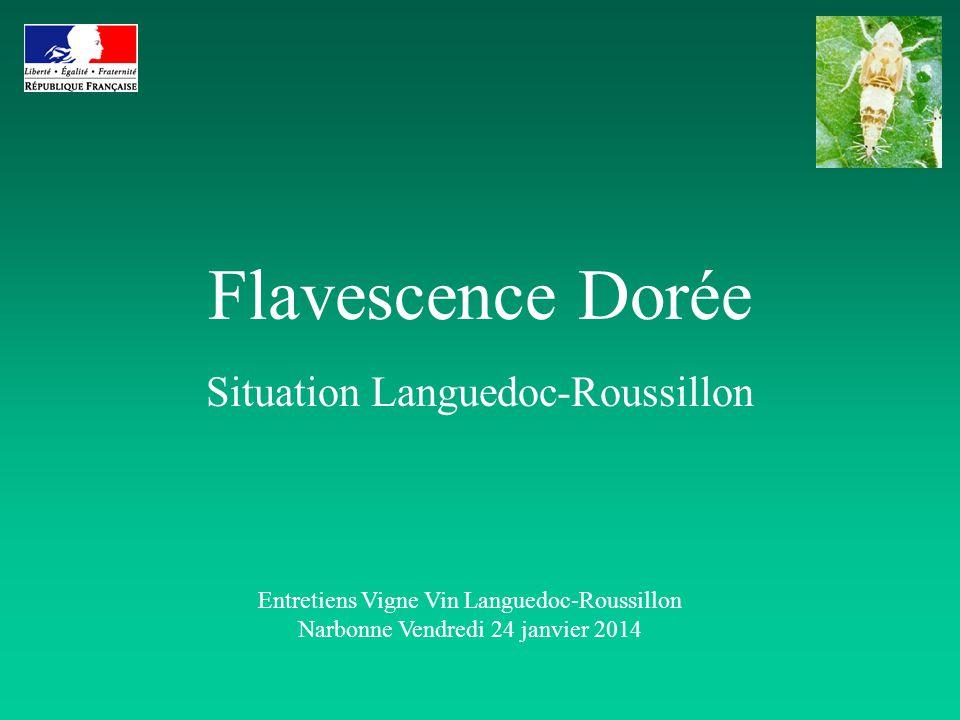 Flavescence Dorée Situation Languedoc-Roussillon Entretiens Vigne Vin Languedoc-Roussillon Narbonne Vendredi 24 janvier 2014