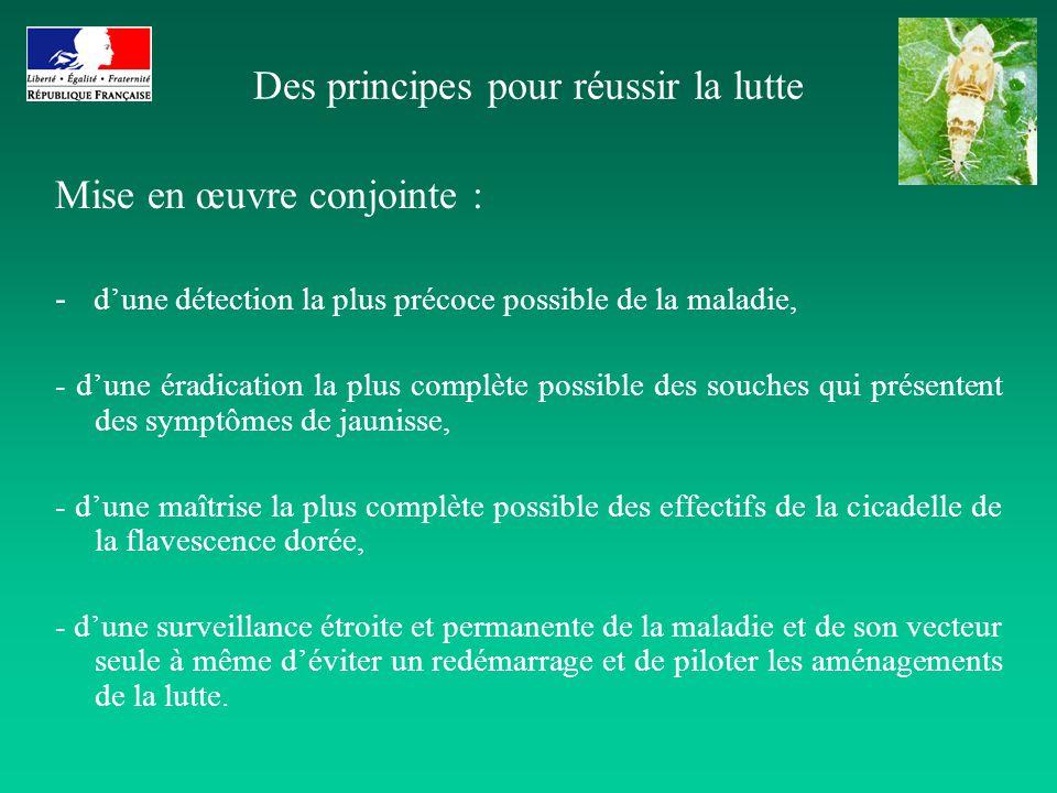 Des principes pour réussir la lutte Mise en œuvre conjointe : - dune détection la plus précoce possible de la maladie, - dune éradication la plus comp