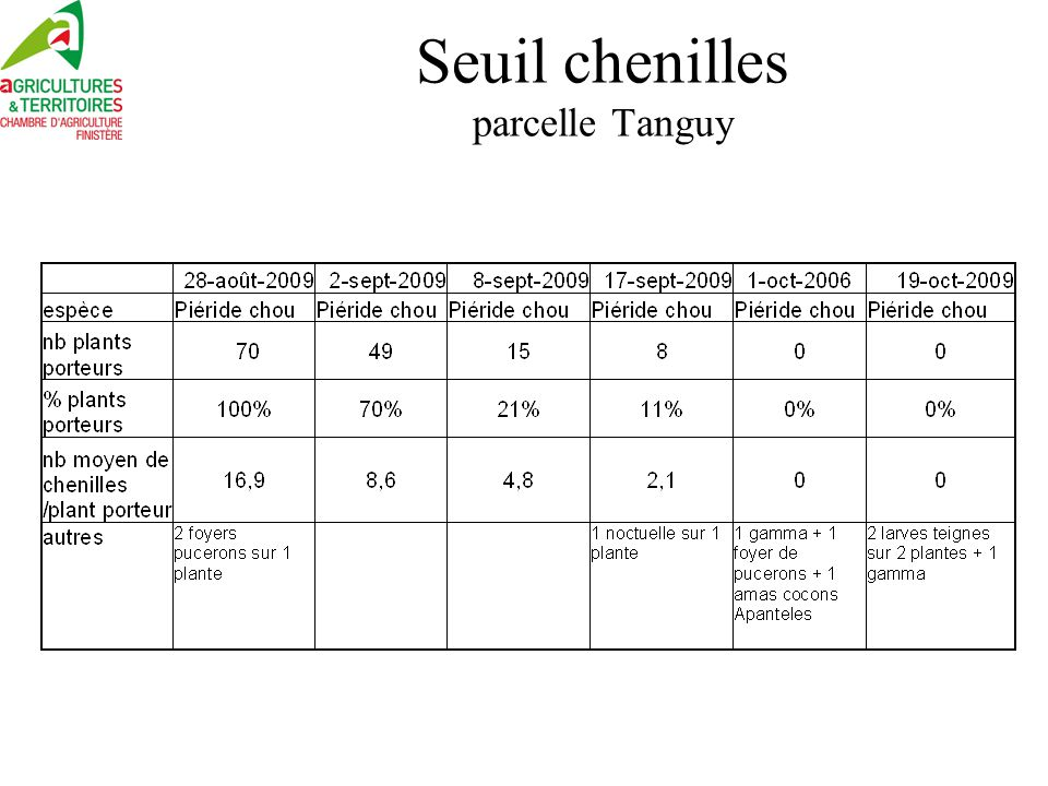 Seuil chenilles parcelle Tanguy