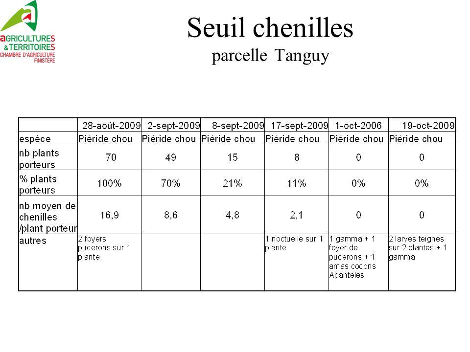 Seuil chenille chou-fleur hiver regroupement 2 parcelles Khi 2, pas de différence de récolte entre les classes chenilles
