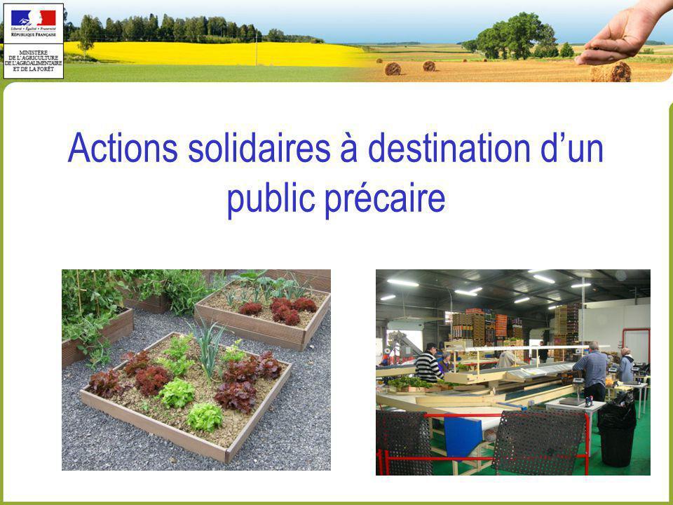 Actions solidaires à destination dun public précaire