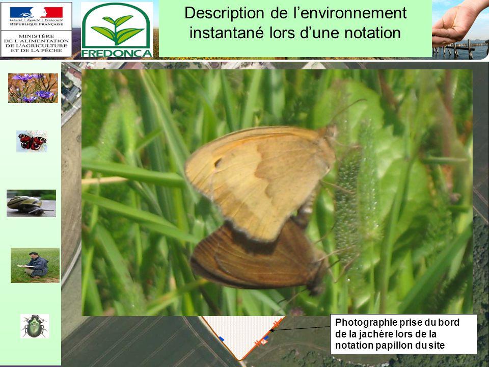 Restitution biovigilance 2010 – Chalon-en-Champagne le 10/02/11 Description de la conduite pratique dune culture (cas de la vigne)