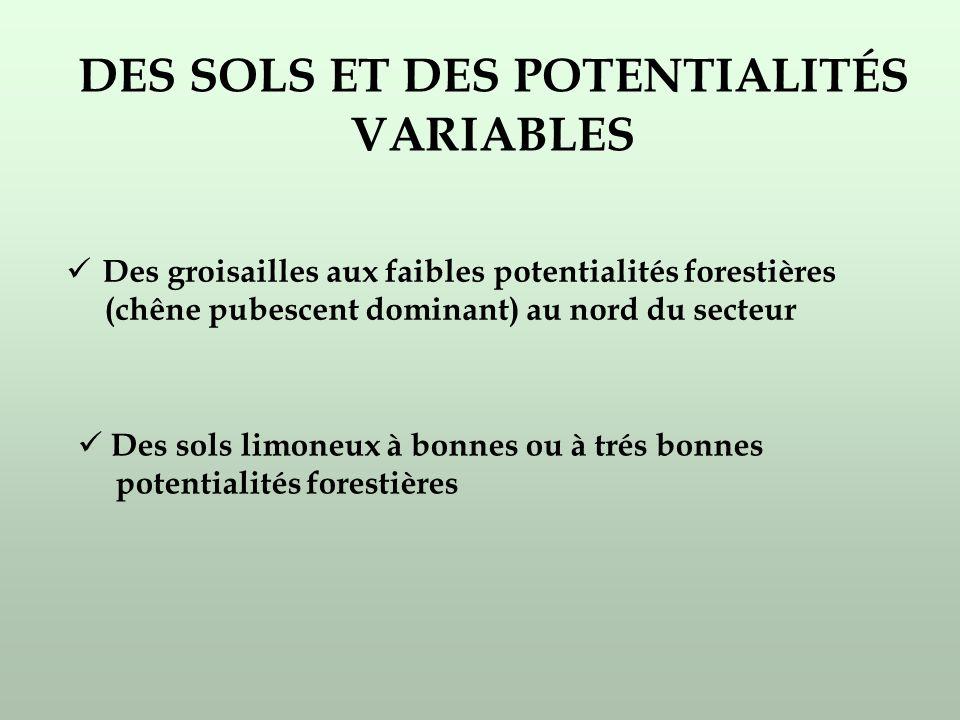 Des groisailles aux faibles potentialités forestières (chêne pubescent dominant) au nord du secteur Des sols limoneux à bonnes ou à trés bonnes potentialités forestières DES SOLS ET DES POTENTIALITÉS VARIABLES