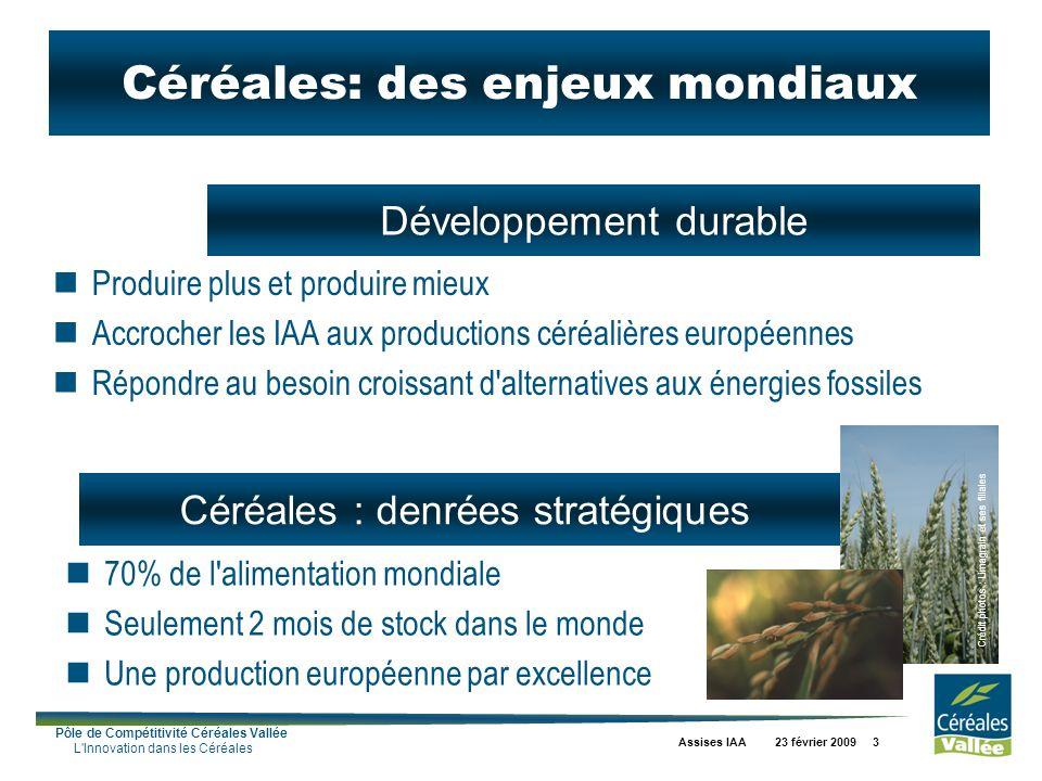 Pôle de Compétitivité Céréales Vallée L'Innovation dans les Céréales Assises IAA 23 février 2009 3 Céréales : denrées stratégiques Développement durab