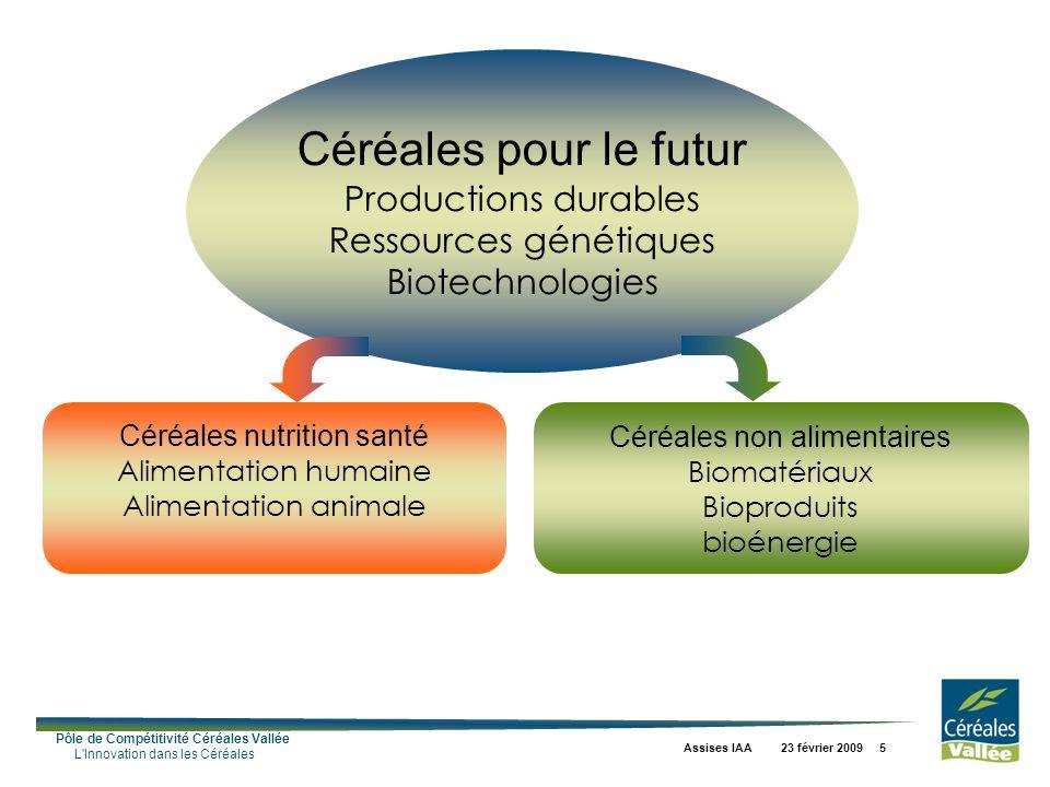 Pôle de Compétitivité Céréales Vallée L Innovation dans les Céréales Assises IAA 23 février 2009 5 Céréales pour le futur Productions durables Ressources génétiques Biotechnologies Céréales non alimentaires Biomatériaux Bioproduits bioénergie Céréales nutrition santé Alimentation humaine Alimentation animale