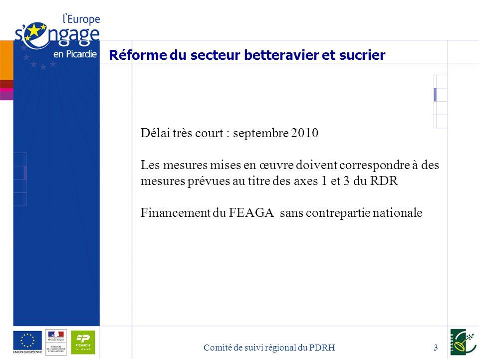 Comité de suivi régional du PDRH3 Réforme du secteur betteravier et sucrier Délai très court : septembre 2010 Les mesures mises en œuvre doivent correspondre à des mesures prévues au titre des axes 1 et 3 du RDR Financement du FEAGA sans contrepartie nationale