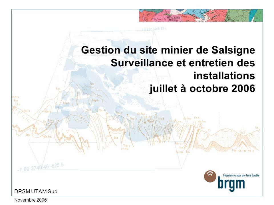 Novembre 2006 Gestion du site minier de Salsigne Surveillance et entretien des installations juillet à octobre 2006 DPSM UTAM Sud