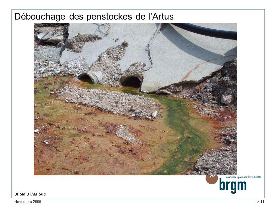 Novembre 2006 DPSM UTAM Sud > 11 Débouchage des penstockes de lArtus