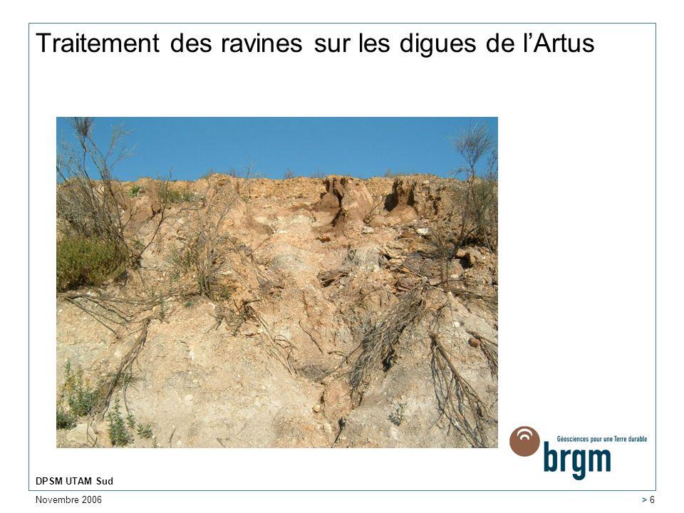 Novembre 2006 DPSM UTAM Sud > 6 Traitement des ravines sur les digues de lArtus