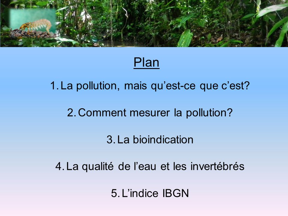 Plan 1.La pollution, mais quest-ce que cest? 2.Comment mesurer la pollution? 3.La bioindication 4.La qualité de leau et les invertébrés 5.Lindice IBGN