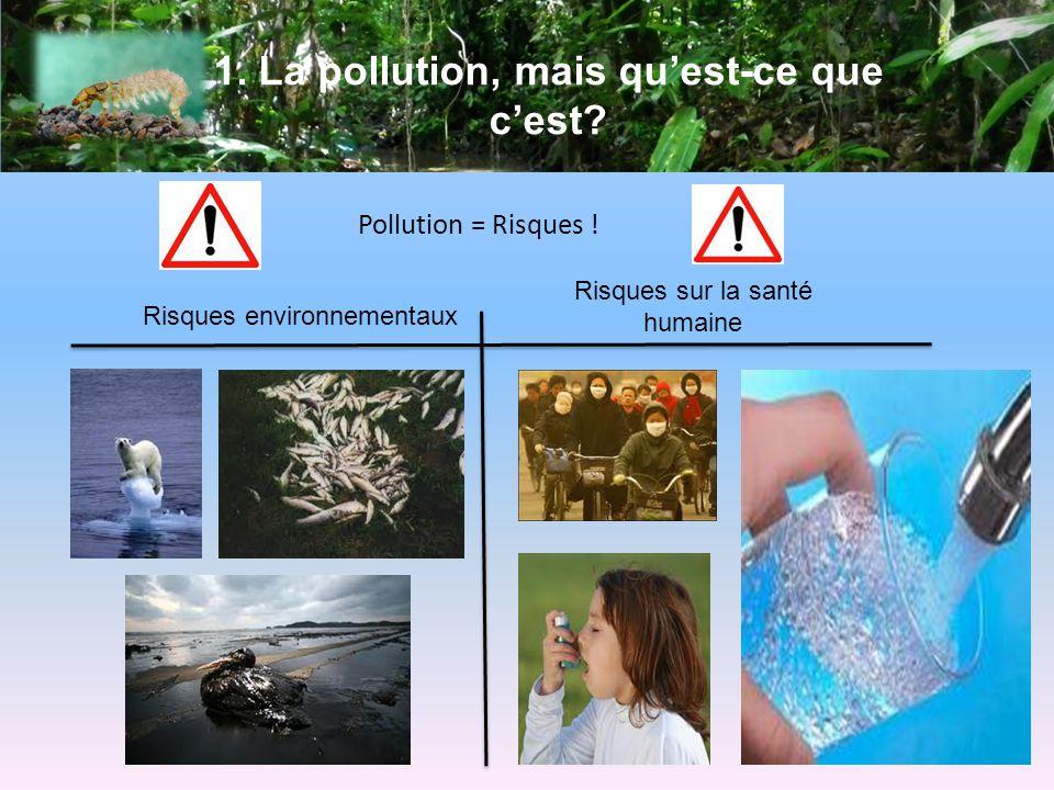 1.La pollution, mais quest-ce que cest. Pollution = Risques .