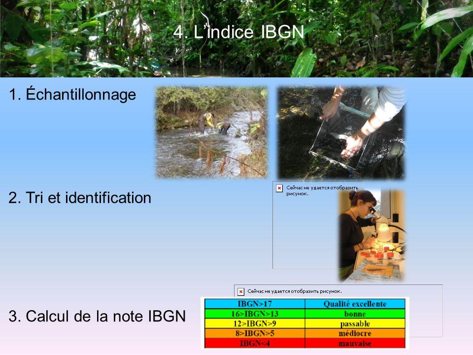 4. Lindice IBGN 1. Échantillonnage 2. Tri et identification 3. Calcul de la note IBGN