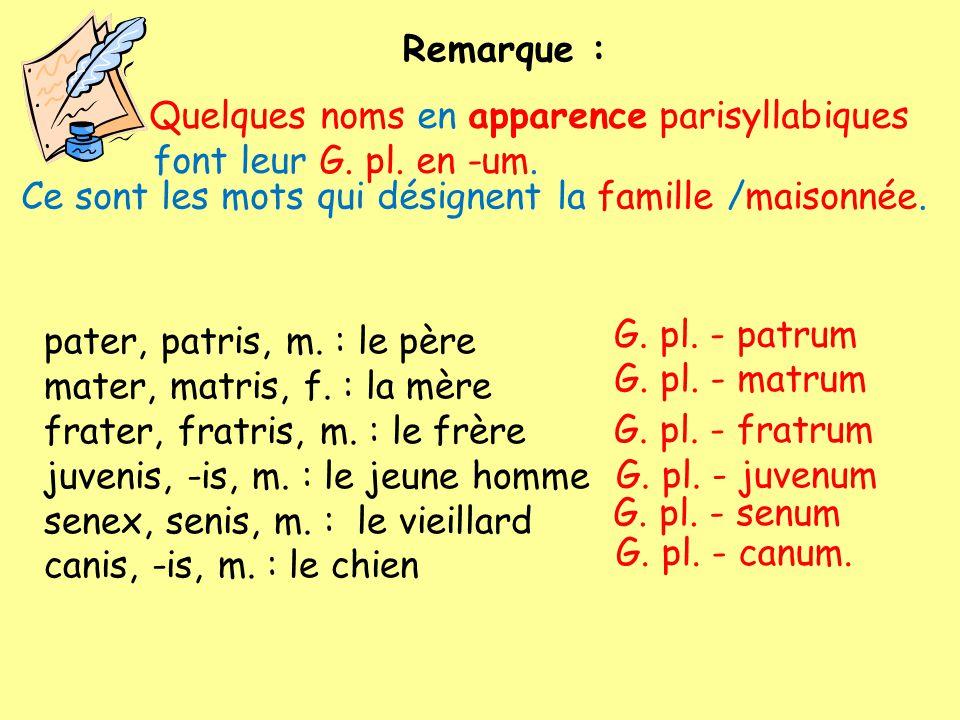 Quelques noms en apparence parisyllabiques font leur G. pl. en -um. Remarque : pater, patris, m. : le père mater, matris, f. : la mère frater, fratris