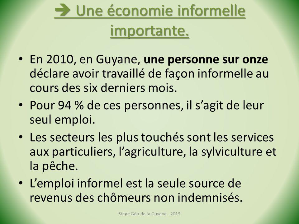 Une économie informelle importante. Une économie informelle importante. En 2010, en Guyane, une personne sur onze déclare avoir travaillé de façon inf