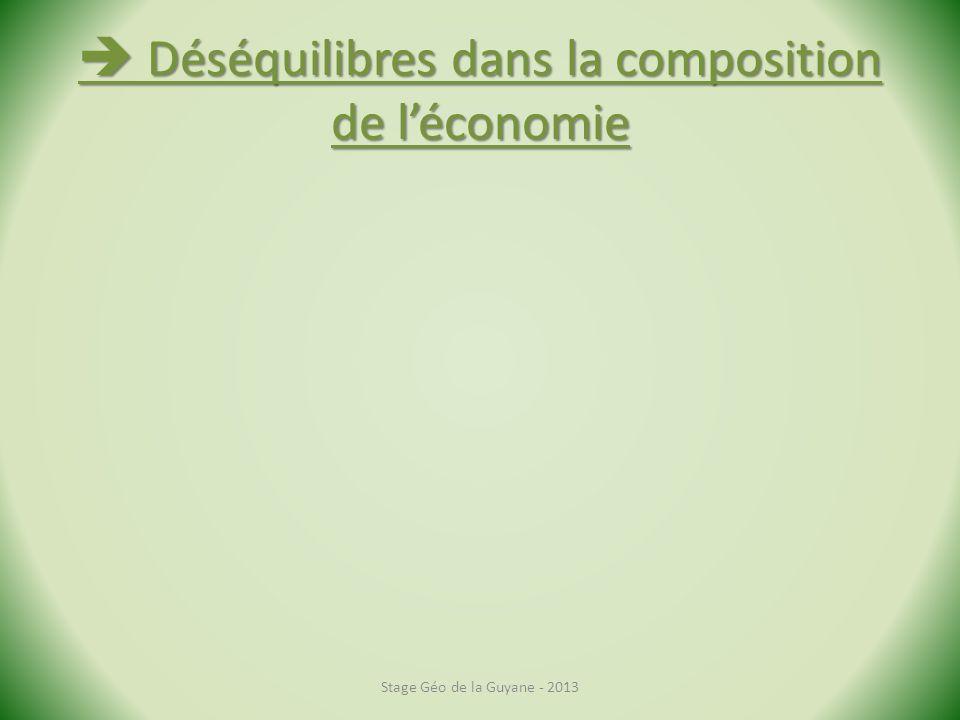 Déséquilibres dans la composition de léconomie Déséquilibres dans la composition de léconomie Stage Géo de la Guyane - 2013