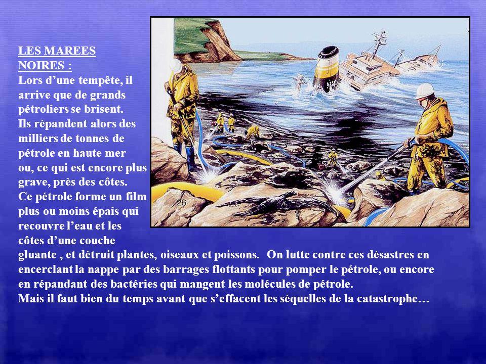 LA POLLUTION : Leau de mer est riche en substances et organismes vivants (plantes et poissons) qui forment un équilibre fragile. Le développement de l