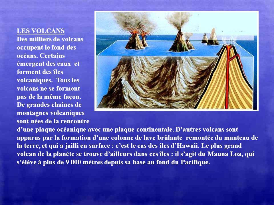 LES FUMEURS Au fond des océans existent parfois détonnantes sources deau chaude, qui forment de véritables cheminées sous-marines, pouvant atteindre 1