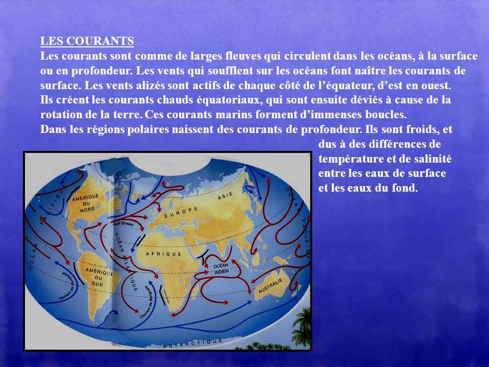 LES VOLCANS Des milliers de volcans occupent le fond des océans. Certains émergent des eaux et forment des îles volcaniques. Tous les volcans ne se fo