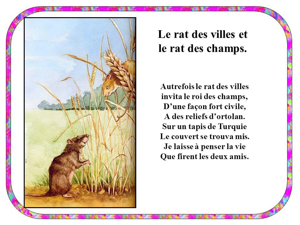 Le rat des villes et le rat des champs.