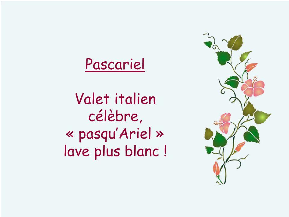 Pascariel Valet italien célèbre, « pasquAriel » lave plus blanc !
