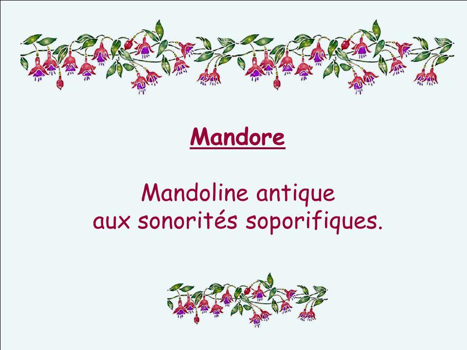 Mandore Mandoline antique aux sonorités soporifiques.