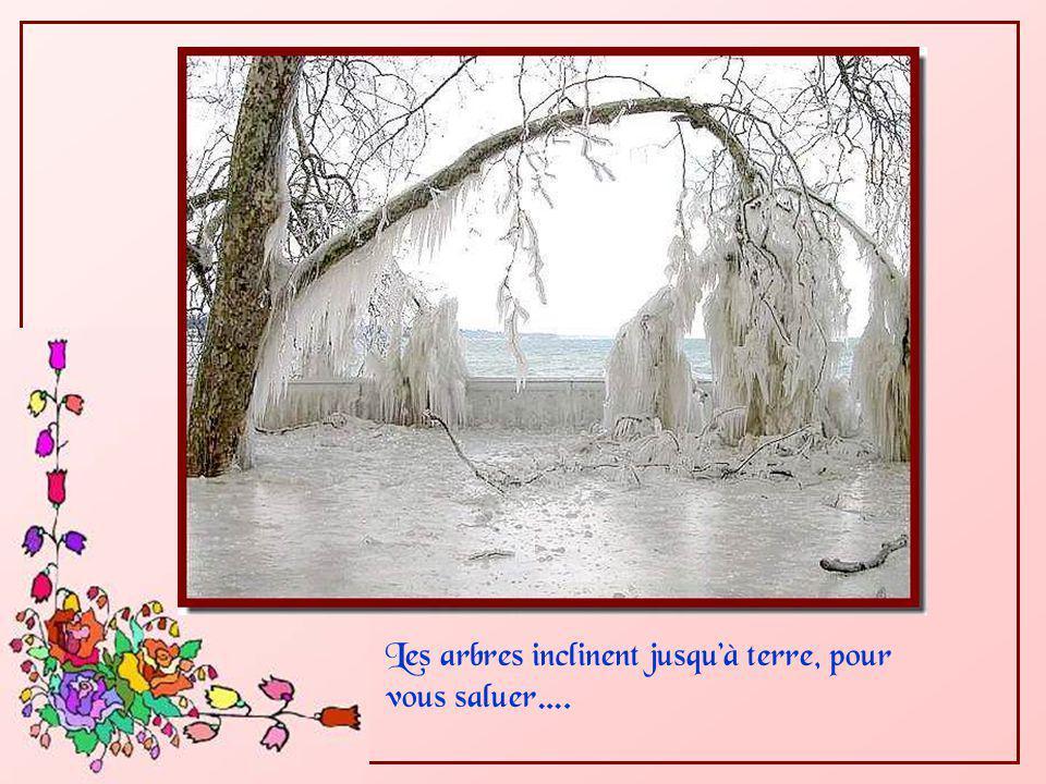Partout, la nature a suspendu de scintillantes guirlandes en votre honneur…