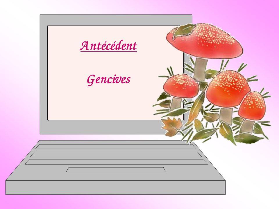 Antécédent Gencives